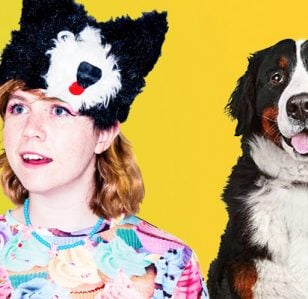 Claire Sullivan: I Wish I Owned a Hotel for Dogs